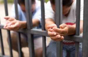 адвокат по защите от депортации